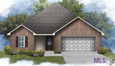 Denham Springs Single Family Home For Sale: 12202 Buddy Ellis Rd