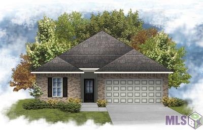 Denham Springs Single Family Home For Sale: 12196 Buddy Ellis Rd