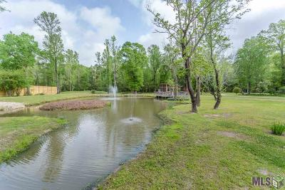 Denham Springs Residential Lots & Land For Sale: Tbd 4-H Club Rd