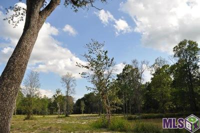 Denham Springs Residential Lots & Land For Sale: 12304 Sims Rd