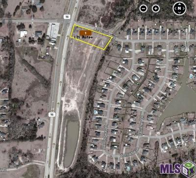 Denham Springs Residential Lots & Land For Sale: 32816 La Hwy 16