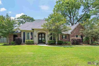 Prairieville Single Family Home For Sale: 37199 Prairie Dr