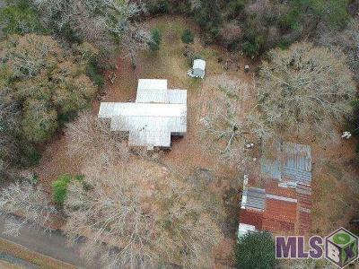 Denham Springs Single Family Home For Sale: 14080 Arrian Dr
