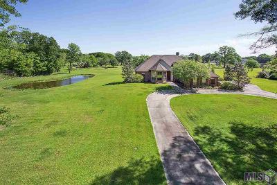 Prairieville Single Family Home For Sale: 39218 David Dr