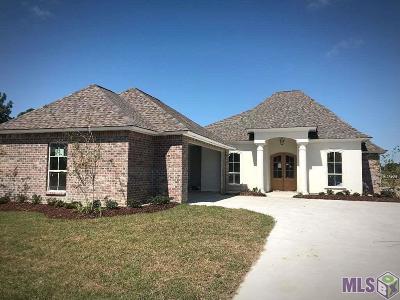 Prairieville Single Family Home For Sale: 14087 Shady Ridge Dr