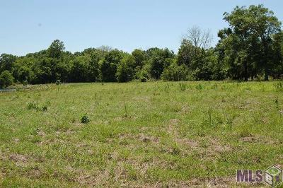 Gonzales Residential Lots & Land For Sale: 10172 La Hwy 431