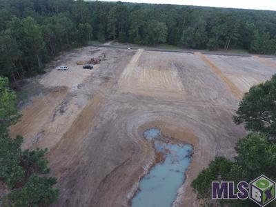 Denham Springs Residential Lots & Land For Sale: Mc-2-E Perkins Rd