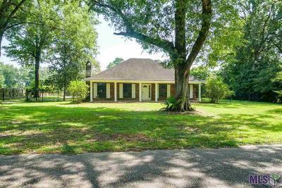 Denham Springs Single Family Home For Sale: 8660 Lake Park Dr
