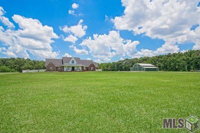 Baton Rouge Single Family Home For Sale: 12248 Devall Rd