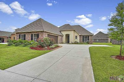 Central Single Family Home For Sale: 4911 Woodstock Way Dr
