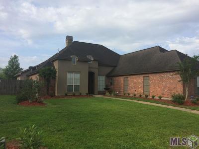 Prairieville Single Family Home For Sale: 39333 Lakeland Ave