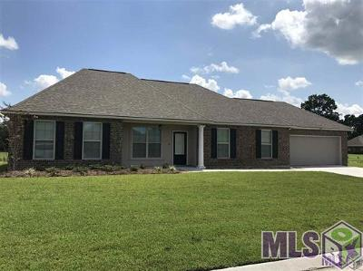 Gonzales Single Family Home Contingent: 14418 Tanya Dr