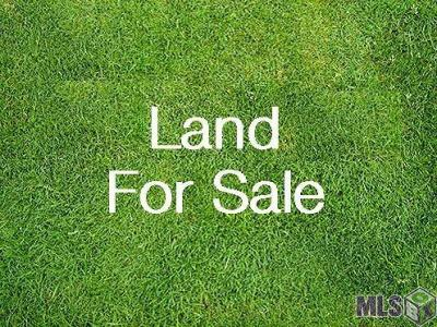 Residential Lots & Land For Sale: 39142 James Dr