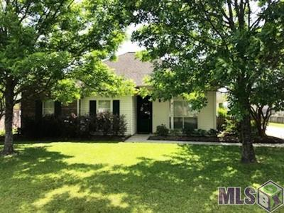 Prairieville Single Family Home For Sale: 17006 W Hunters Trace