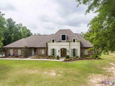 Denham Springs Single Family Home For Sale: 12998 Hammack Rd