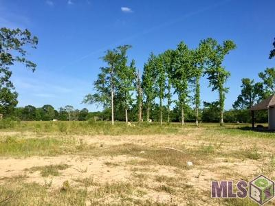 Prairieville Residential Lots & Land For Sale: 14112 Sleepy Hollow Dr