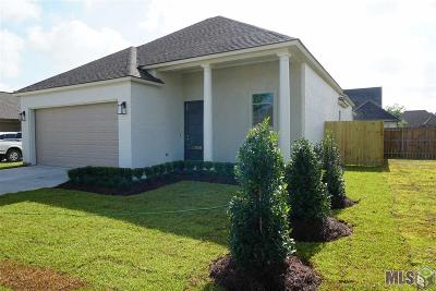 Geismar Single Family Home For Sale: 12050 Rotterdam Ave