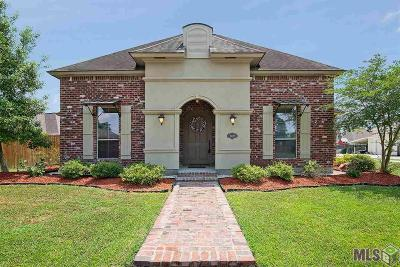 Baton Rouge Single Family Home For Sale: 15242 Summer Park Ln