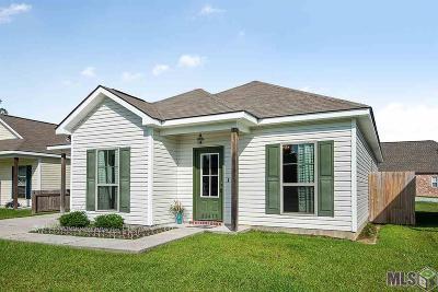 Denham Springs Single Family Home For Sale: 32415 Lake Pointe Blvd