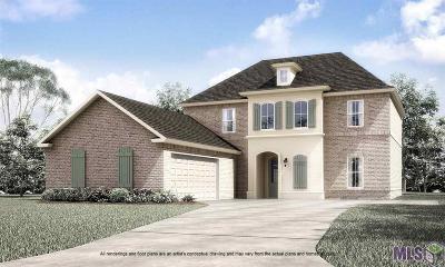 Prairieville Single Family Home For Sale: 15104 Germany Oaks Blvd