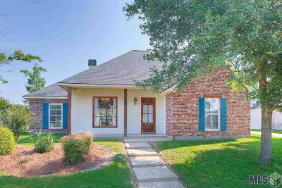 Baton Rouge Single Family Home For Sale: 10117 Glen View Ave