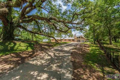 Prairieville Single Family Home For Sale: 16070 Bluff Rd