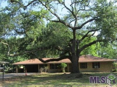 Baton Rouge Single Family Home For Sale: 9669 Mollylea Dr