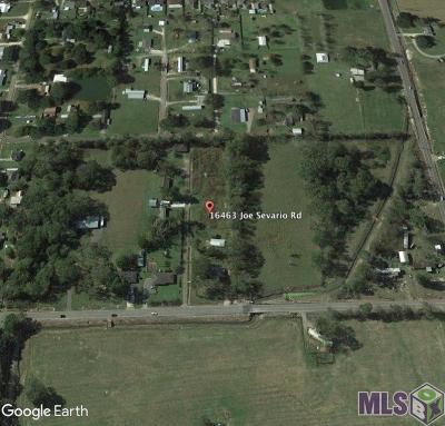 Prairieville Single Family Home For Sale: 16463 Joe Sevario Rd