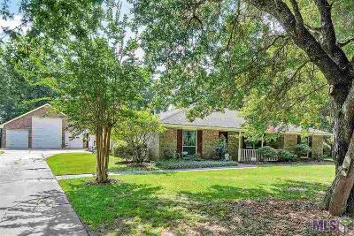 Denham Springs Single Family Home For Sale: 8351 Hermitage Dr