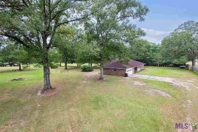 Denham Springs Single Family Home For Sale: 25245 Denver St