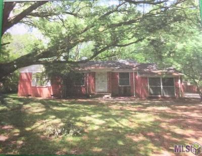 Baton Rouge Single Family Home For Sale: 368 Finchley Ave