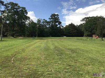 Denham Springs Residential Lots & Land For Sale: 10705 Dunmark Rd