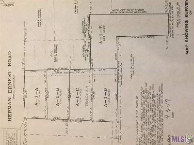 Denham Springs Residential Lots & Land For Sale: Tract A-1 Herman Ernest Dr