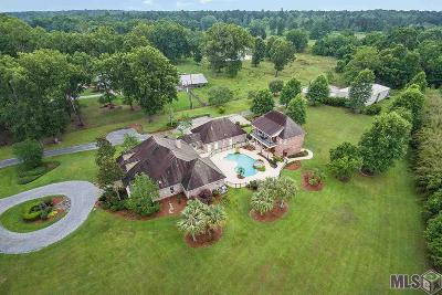 Prairieville Single Family Home For Sale: 42643 Hwy 42