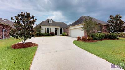 Prairieville Single Family Home For Sale: 16483 Winborne Blvd