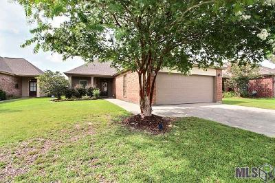 Baton Rouge Single Family Home For Sale: 3366 Southlake Ave