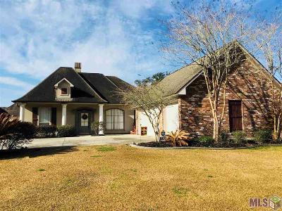 Prairieville Single Family Home For Sale: 18103 Kenner