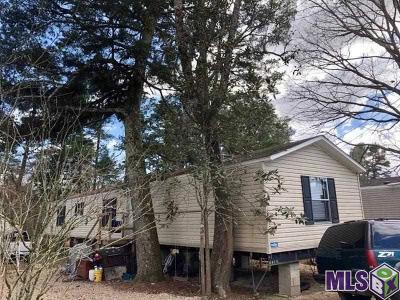 Denham Springs Single Family Home For Sale: 8588 Susie Cir