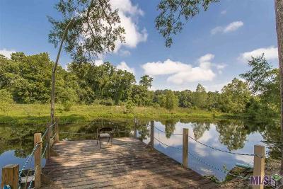 Diez Campsites Single Family Home For Sale: 18399 Kay Dr