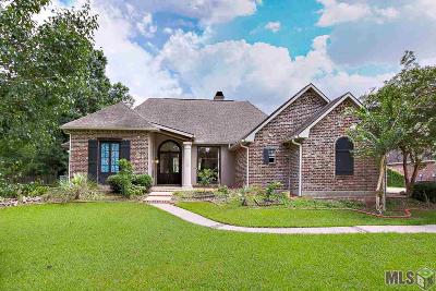 Baton Rouge Single Family Home For Sale: 1243 N Cicero Ave