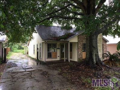 Denham Springs Single Family Home For Sale: 30572 Fairway View Dr