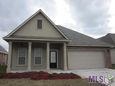Baton Rouge Single Family Home For Sale: 17840 Waterloo Dr