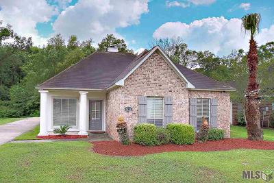 Baton Rouge Single Family Home For Sale: 9732 Blakemore Ave