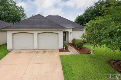 Baton Rouge Single Family Home For Sale: 8922 Boone Dr