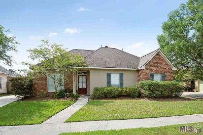 Baton Rouge Single Family Home For Sale: 10312 Springbrook Ave
