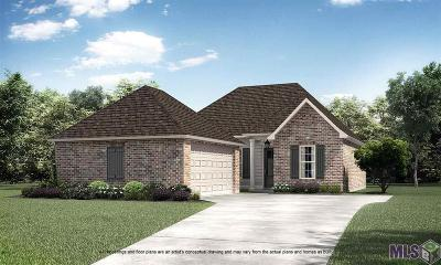 Prairieville Single Family Home For Sale: 15209 Germany Oaks Blvd