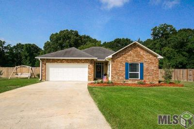 Denham Springs Single Family Home For Sale: 10128 Carter Hills Ave