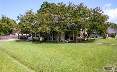 Gonzales Single Family Home For Sale: 14096 Troy Duplessis Rd