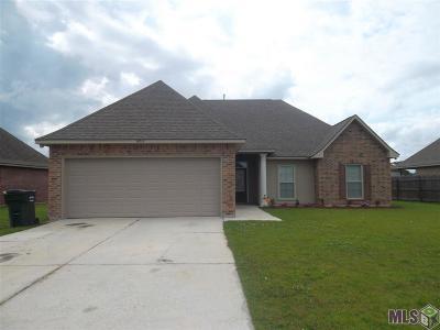 Prairieville Single Family Home For Sale: 16315 Keystone Blvd