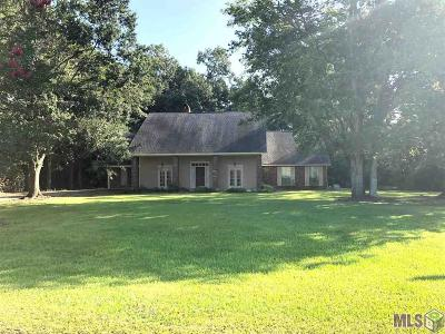 Baton Rouge Single Family Home For Sale: 17255 George Oneal Rd